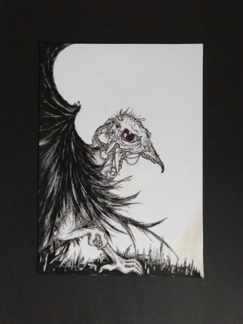 badbird by ursula aavasalu tigukass