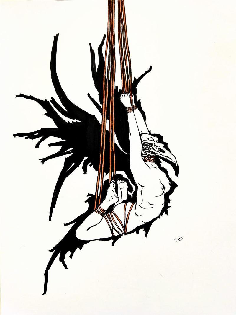 shadowwings by ursula aavasalu tigukass